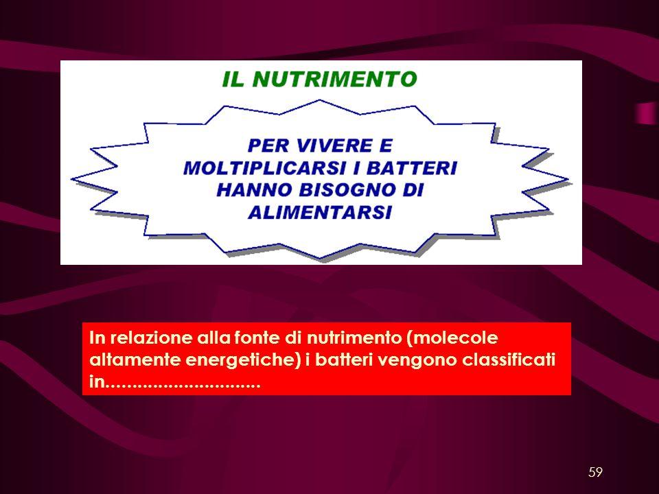 In relazione alla fonte di nutrimento (molecole altamente energetiche) i batteri vengono classificati in..............................