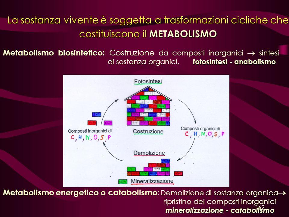 La sostanza vivente è soggetta a trasformazioni cicliche che costituiscono il METABOLISMO