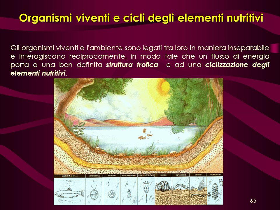 Organismi viventi e cicli degli elementi nutritivi