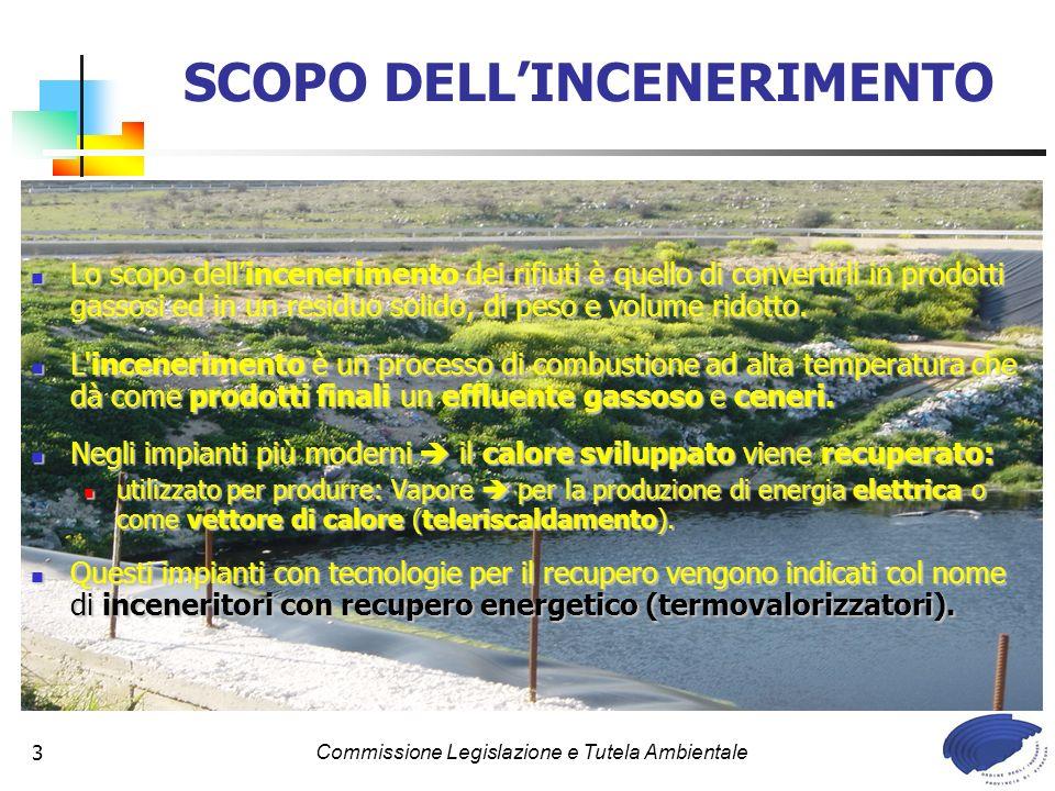 SCOPO DELL'INCENERIMENTO