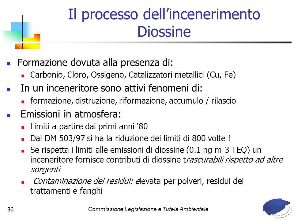 Il processo dell'incenerimento Diossine
