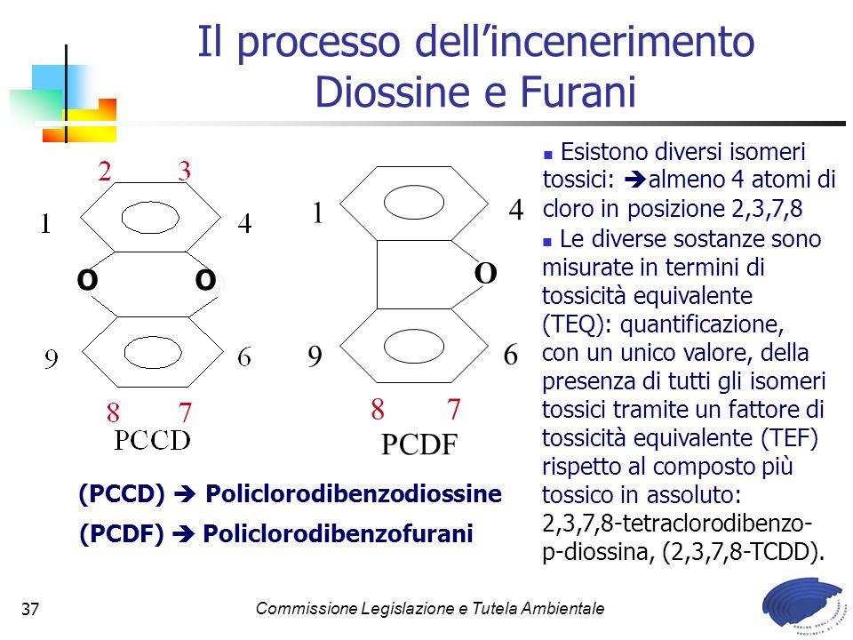 Il processo dell'incenerimento Diossine e Furani