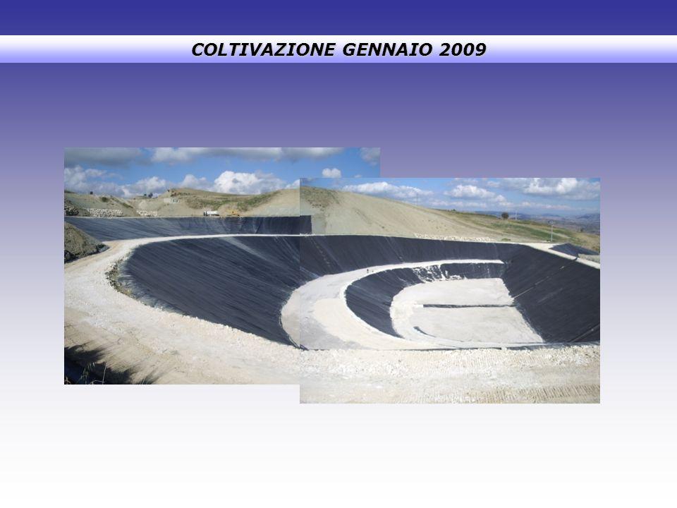 COLTIVAZIONE GENNAIO 2009