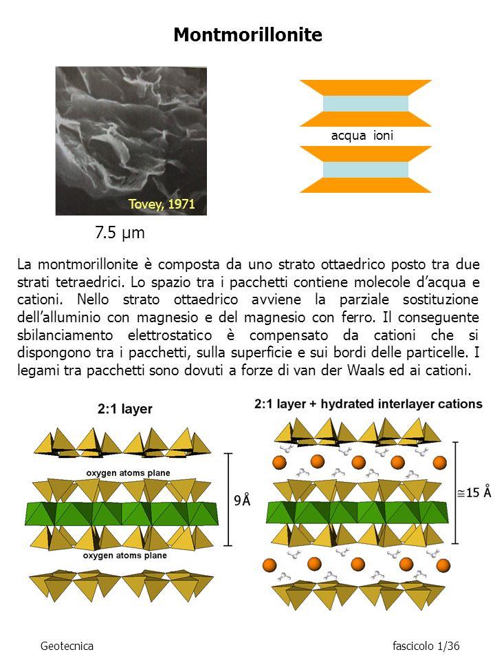 Montmorillonite acqua ioni. Tovey, 1971. 7.5 μm.