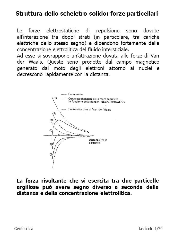 Struttura dello scheletro solido: forze particellari