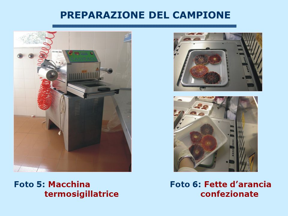 PREPARAZIONE DEL CAMPIONE