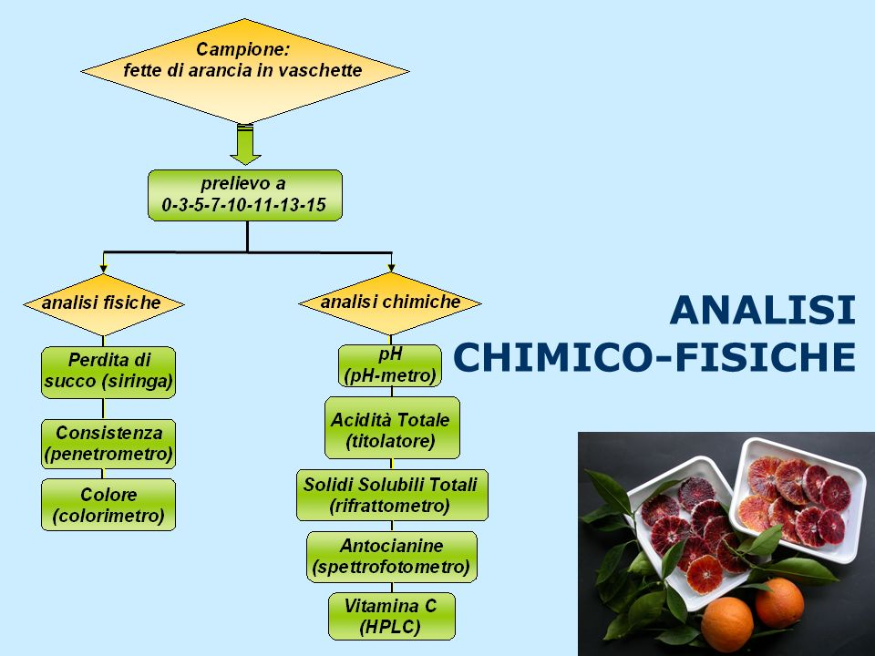 ANALISI CHIMICO-FISICHE