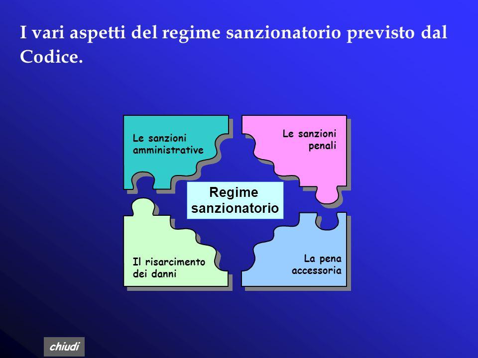 I vari aspetti del regime sanzionatorio previsto dal Codice.