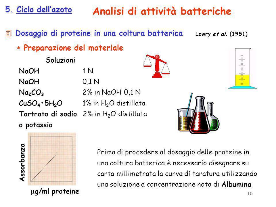 Analisi di attività batteriche
