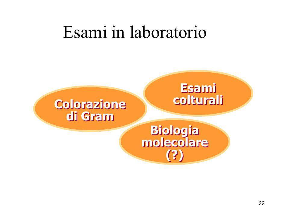 Biologia molecolare ( )
