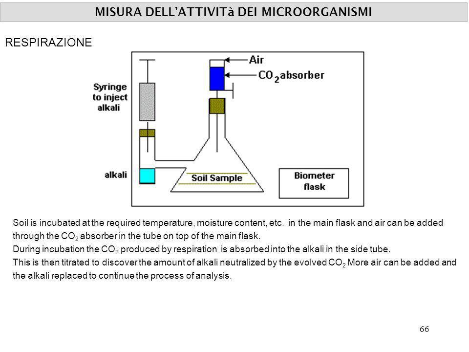 MISURA DELL'ATTIVITà DEI MICROORGANISMI