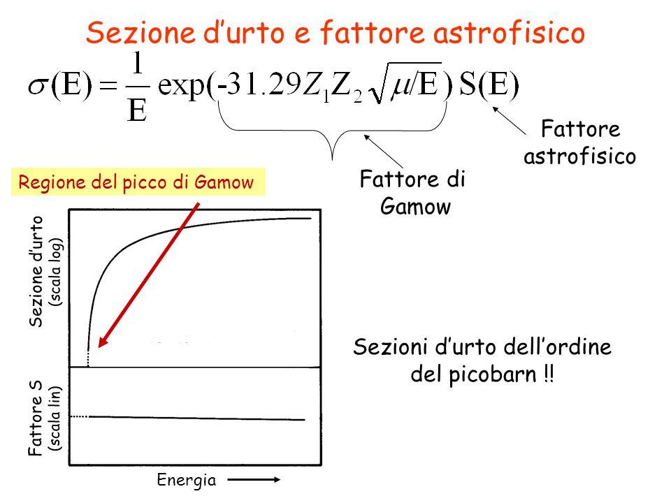 Sezione d'urto e fattore astrofisico