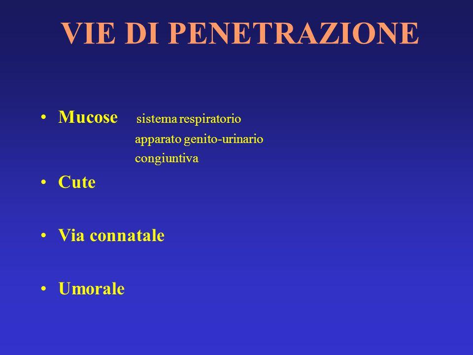VIE DI PENETRAZIONE Mucose sistema respiratorio Cute Via connatale