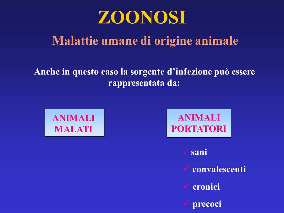 Malattie umane di origine animale