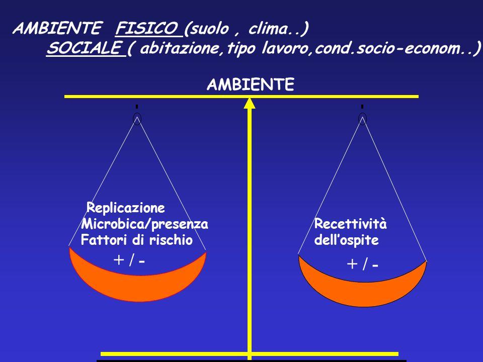 + / - + / - AMBIENTE FISICO (suolo , clima..)