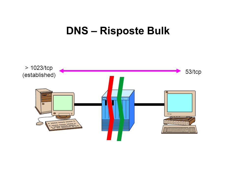 DNS – Risposte Bulk > 1023/tcp (established) 53/tcp