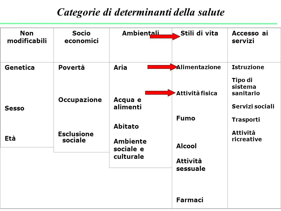 Categorie di determinanti della salute