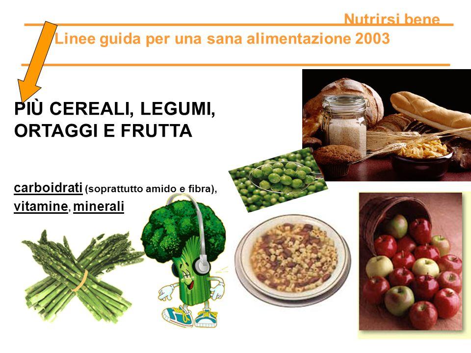 Linee guida per una sana alimentazione 2003