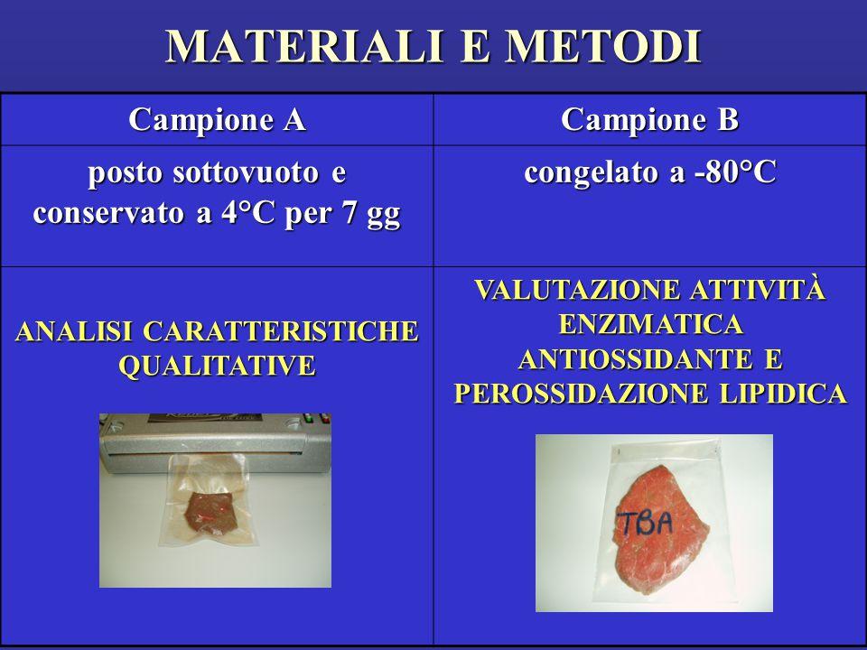 MATERIALI E METODI Campione A Campione B