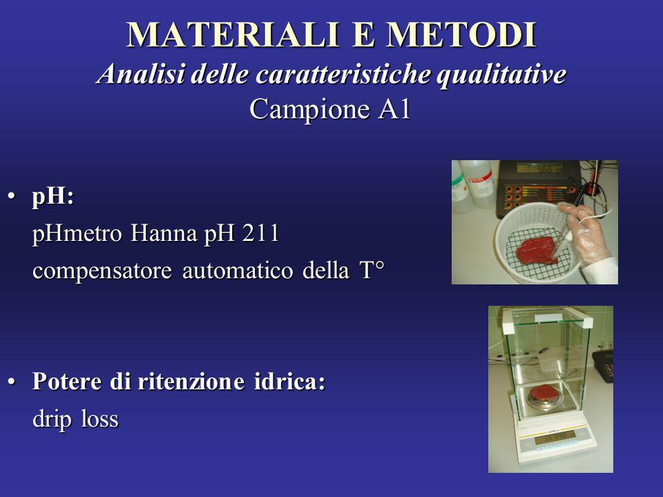 MATERIALI E METODI Analisi delle caratteristiche qualitative Campione A1