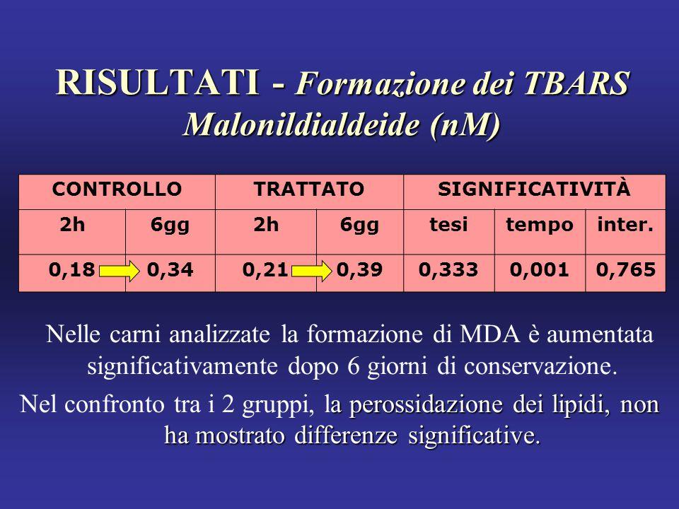 RISULTATI - Formazione dei TBARS Malonildialdeide (nM)
