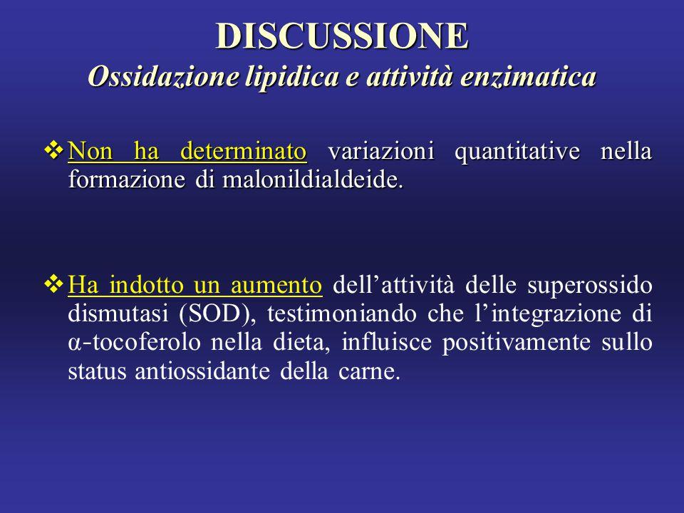 DISCUSSIONE Ossidazione lipidica e attività enzimatica