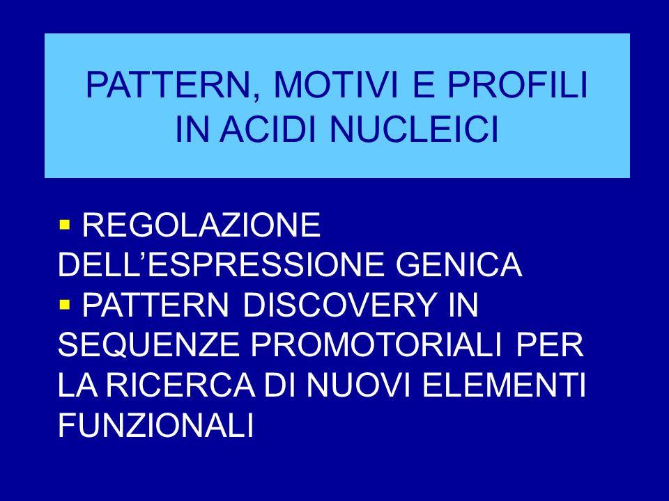 PATTERN, MOTIVI E PROFILI IN ACIDI NUCLEICI