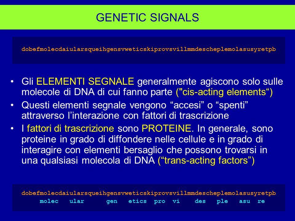 GENETIC SIGNALS dobefmolecdaiularsqueihgensvweticskiprovsvillmmdescheplemolasusyretpb.