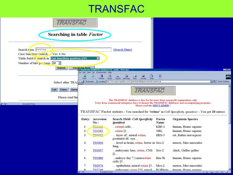 TRANSFAC