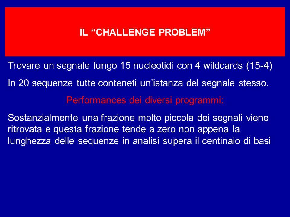 IL CHALLENGE PROBLEM