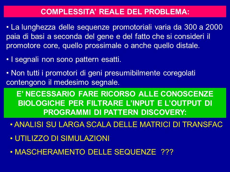 COMPLESSITA' REALE DEL PROBLEMA: