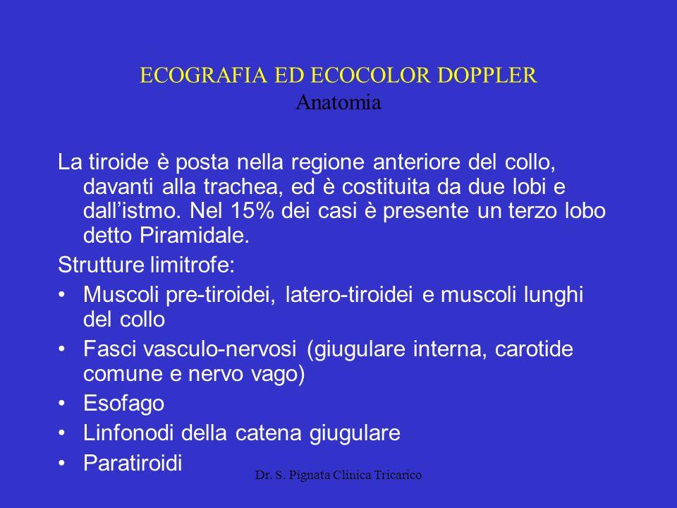 ECOGRAFIA ED ECOCOLOR DOPPLER Anatomia