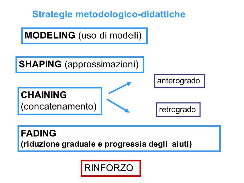 Strategie metodologico-didattiche