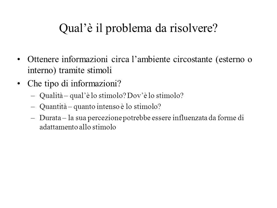 Qual'è il problema da risolvere