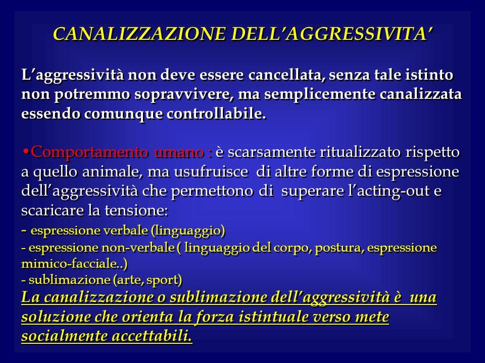 CANALIZZAZIONE DELL'AGGRESSIVITA'