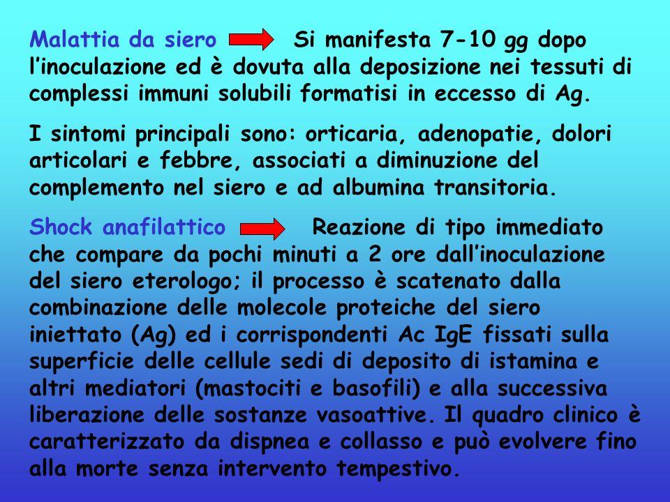 Malattia da siero Si manifesta 7-10 gg dopo l'inoculazione ed è dovuta alla deposizione nei tessuti di complessi immuni solubili formatisi in eccesso di Ag.