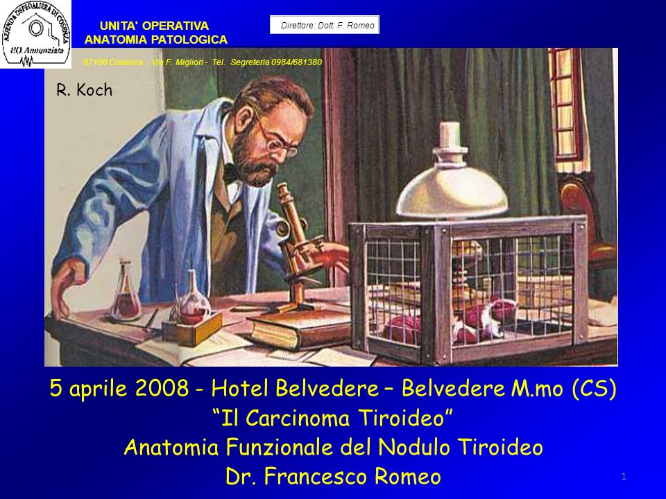 5 aprile 2008 - Hotel Belvedere – Belvedere M.mo (CS)