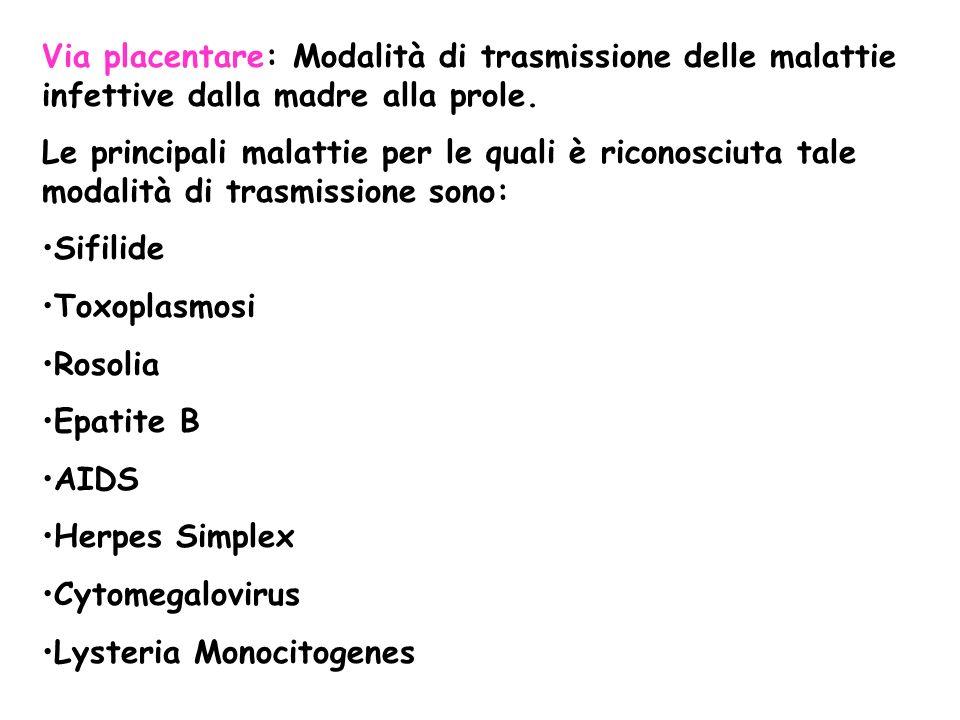 Via placentare: Modalità di trasmissione delle malattie infettive dalla madre alla prole.