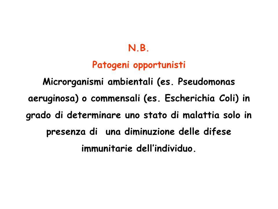 Patogeni opportunisti Microrganismi ambientali (es. Pseudomonas