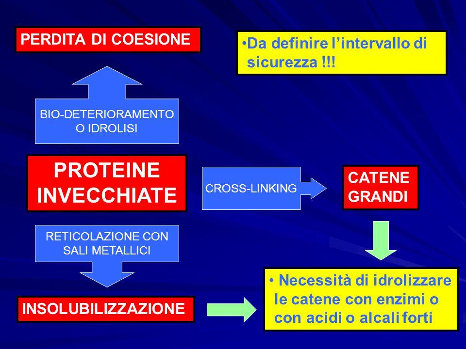 PROTEINE INVECCHIATE PERDITA DI COESIONE