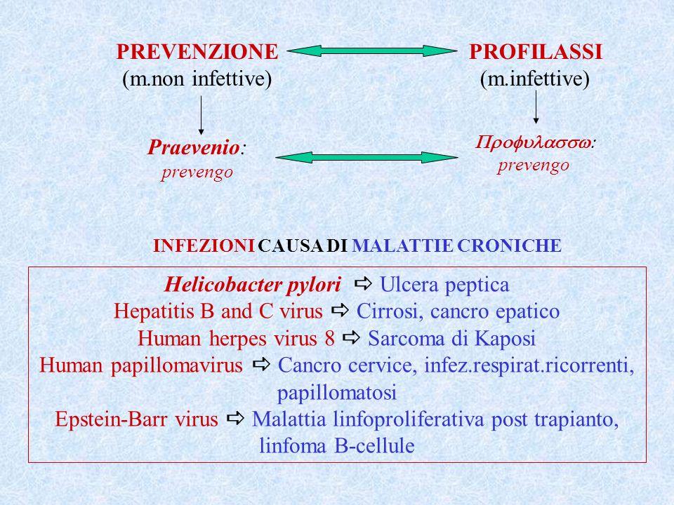 Helicobacter pylori  Ulcera peptica