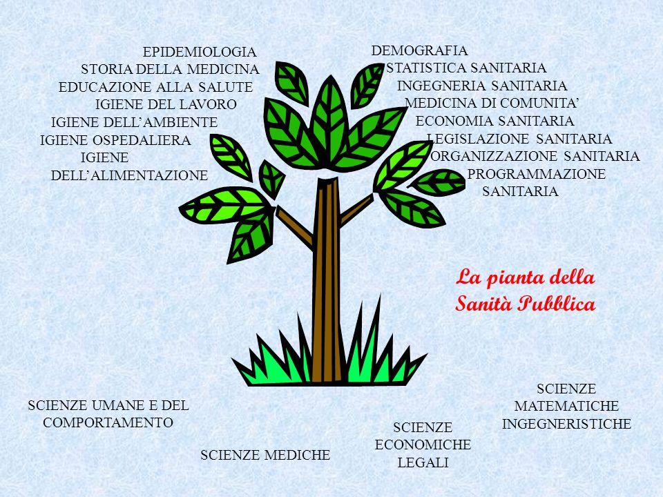 La pianta della Sanità Pubblica