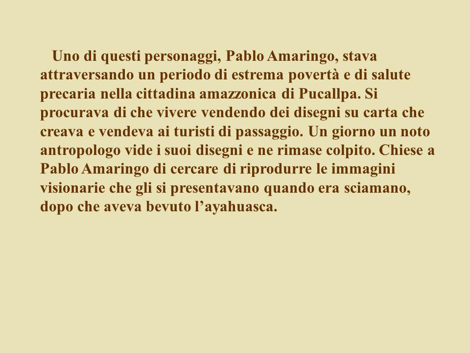 Uno di questi personaggi, Pablo Amaringo, stava attraversando un periodo di estrema povertà e di salute precaria nella cittadina amazzonica di Pucallpa.