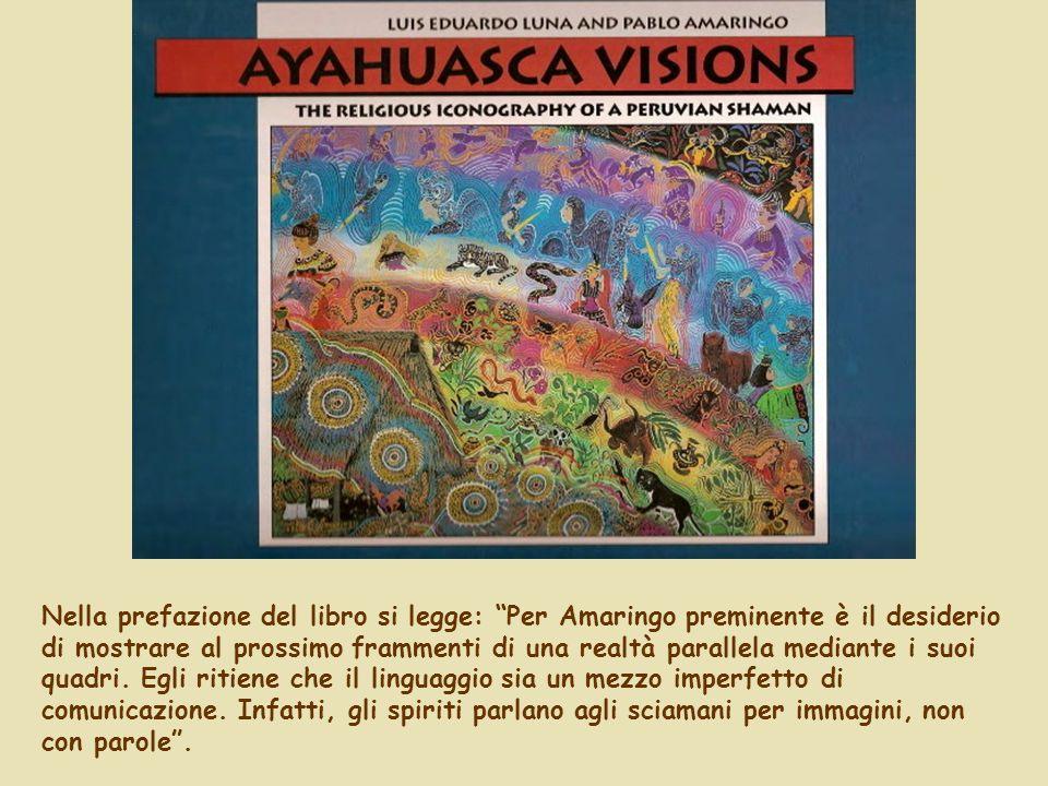 Nella prefazione del libro si legge: Per Amaringo preminente è il desiderio di mostrare al prossimo frammenti di una realtà parallela mediante i suoi quadri.