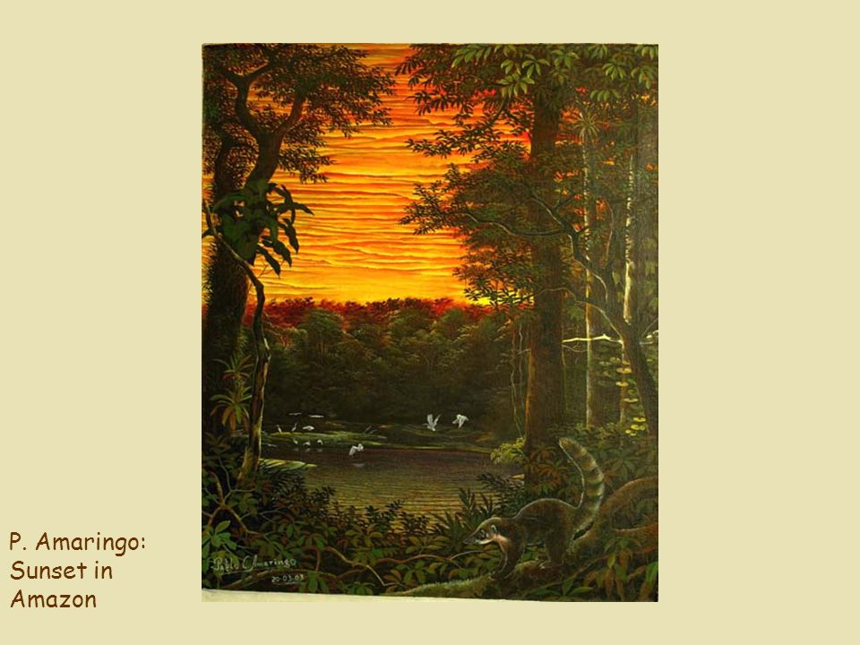 P. Amaringo: Sunset in Amazon