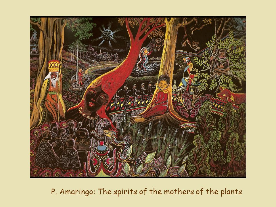 P. Amaringo: The spirits of the mothers of the plants