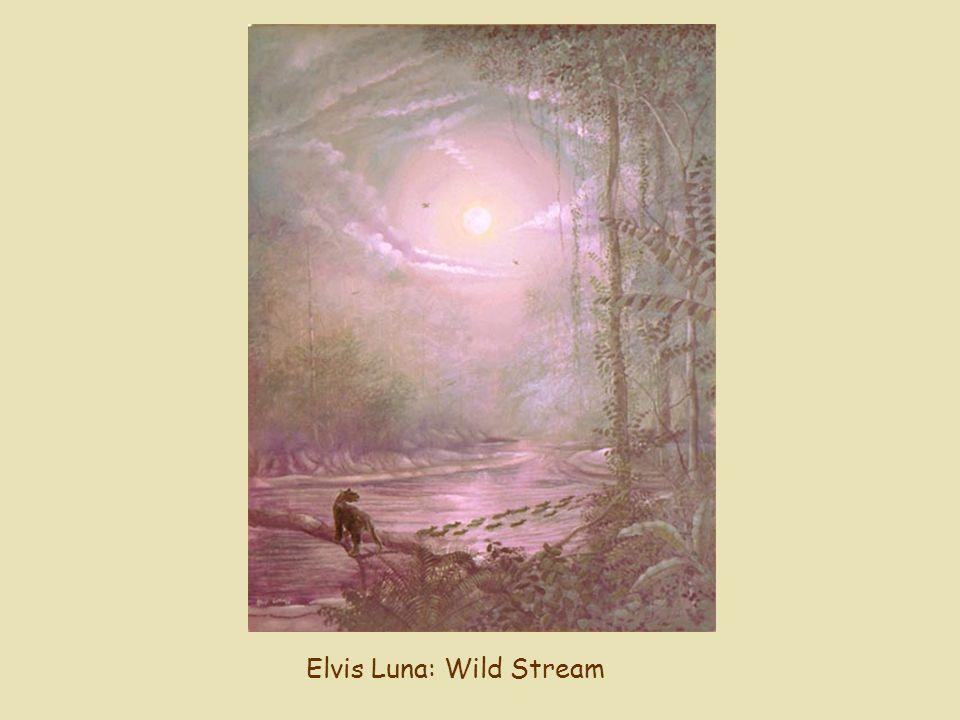 Elvis Luna: Wild Stream