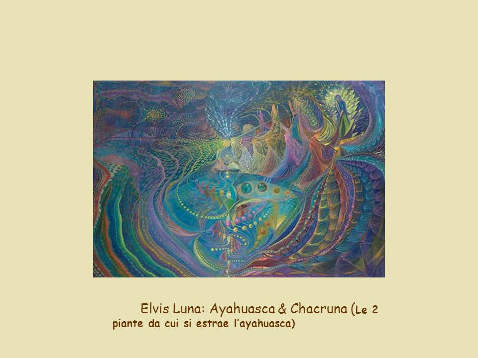 Elvis Luna: Ayahuasca & Chacruna (Le 2 piante da cui si estrae l'ayahuasca)