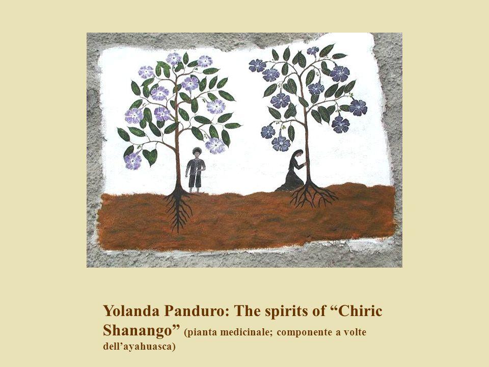 Yolanda Panduro: The spirits of Chiric Shanango (pianta medicinale; componente a volte dell'ayahuasca)