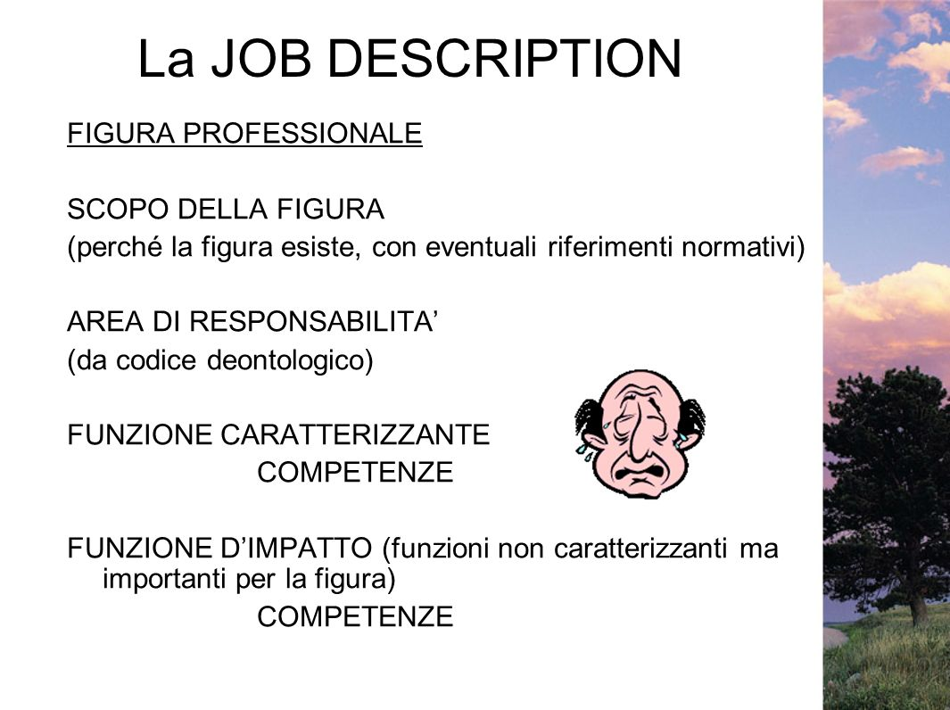 La JOB DESCRIPTION FIGURA PROFESSIONALE SCOPO DELLA FIGURA